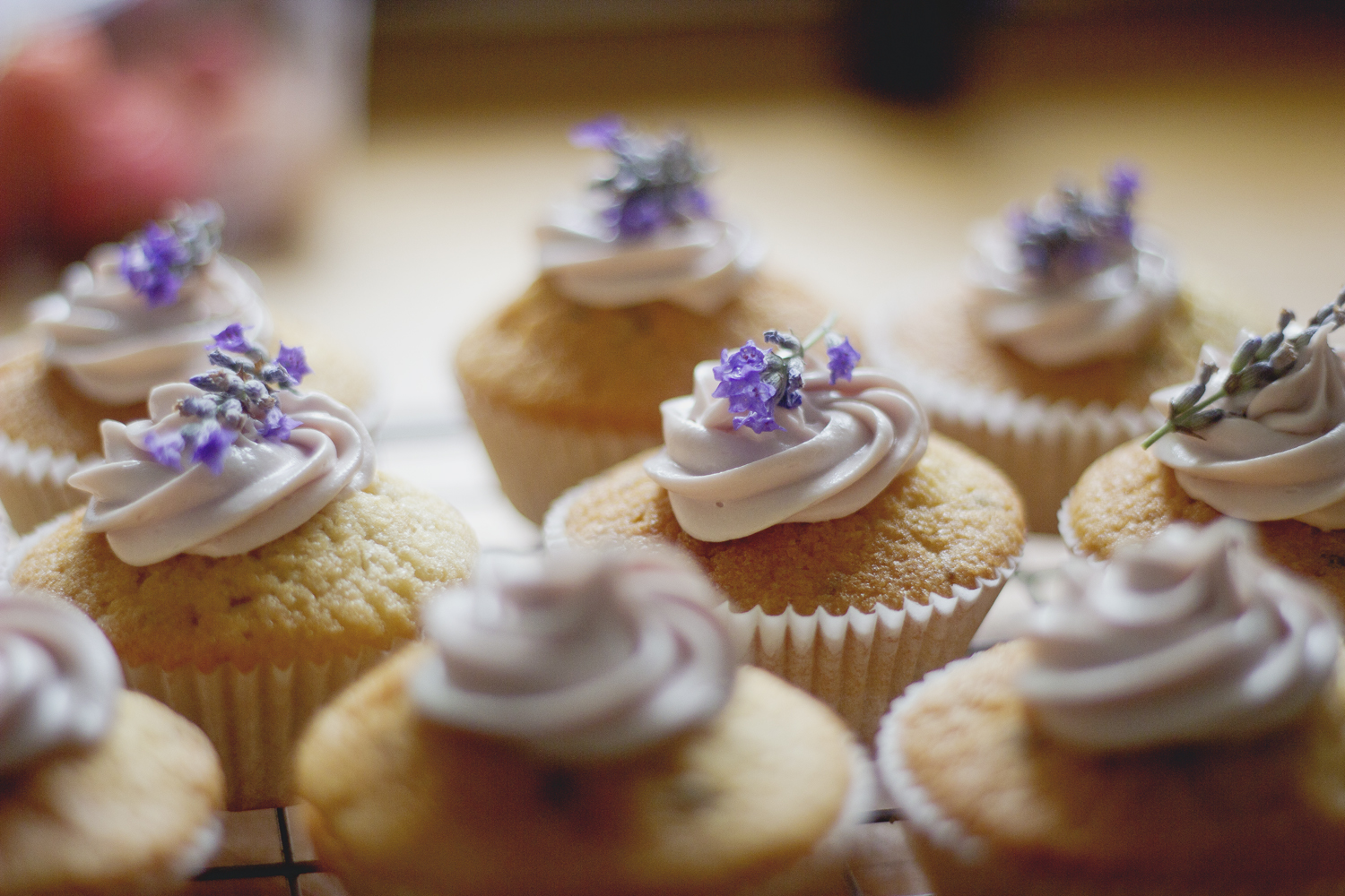Katie Leask Photography cupcakes
