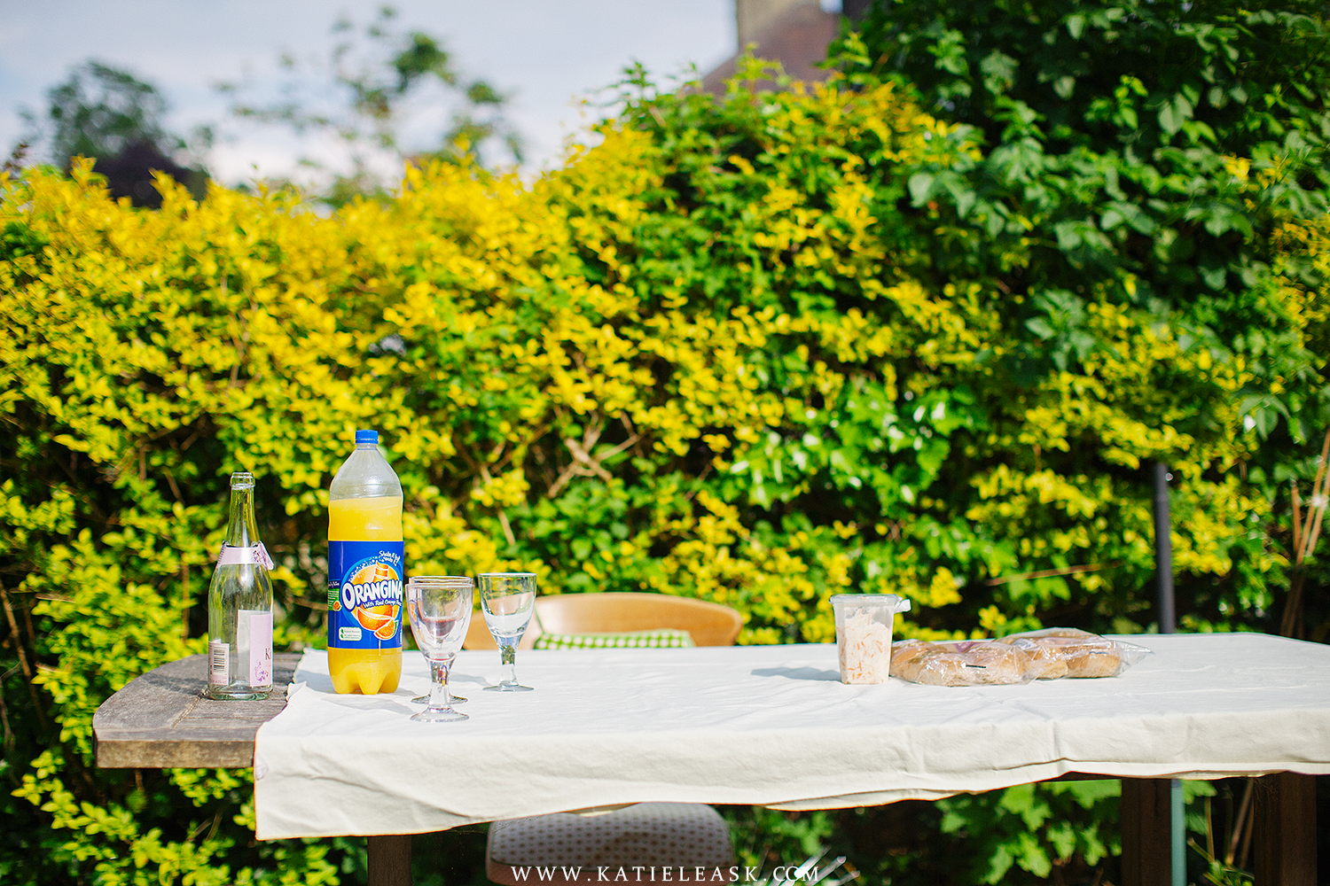 Katie-Leask-Photography-BBQ-004-S